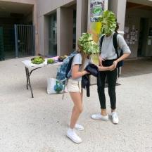 duo oran - au vert - performance - salade - BHN8 - Lyon (4)